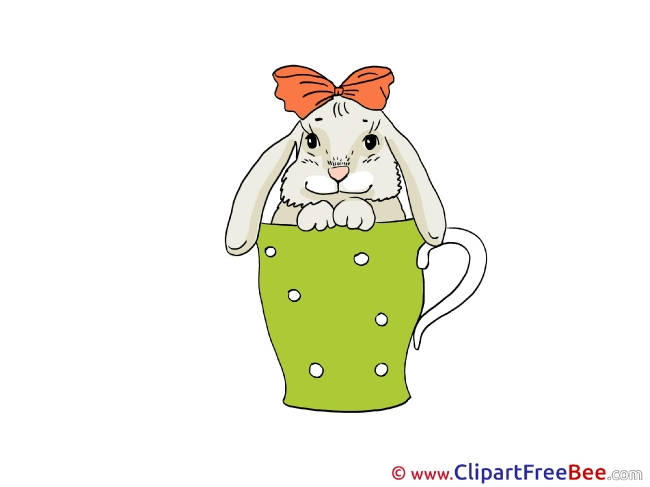 Cup Hare Images download free Cliparts