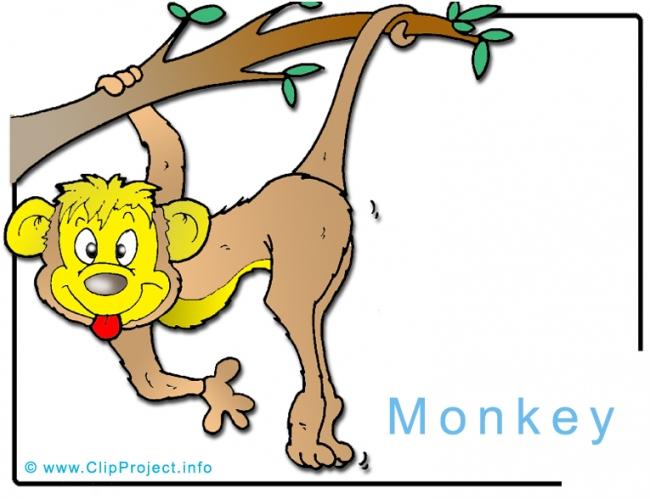 Monkey Clip Art Image free