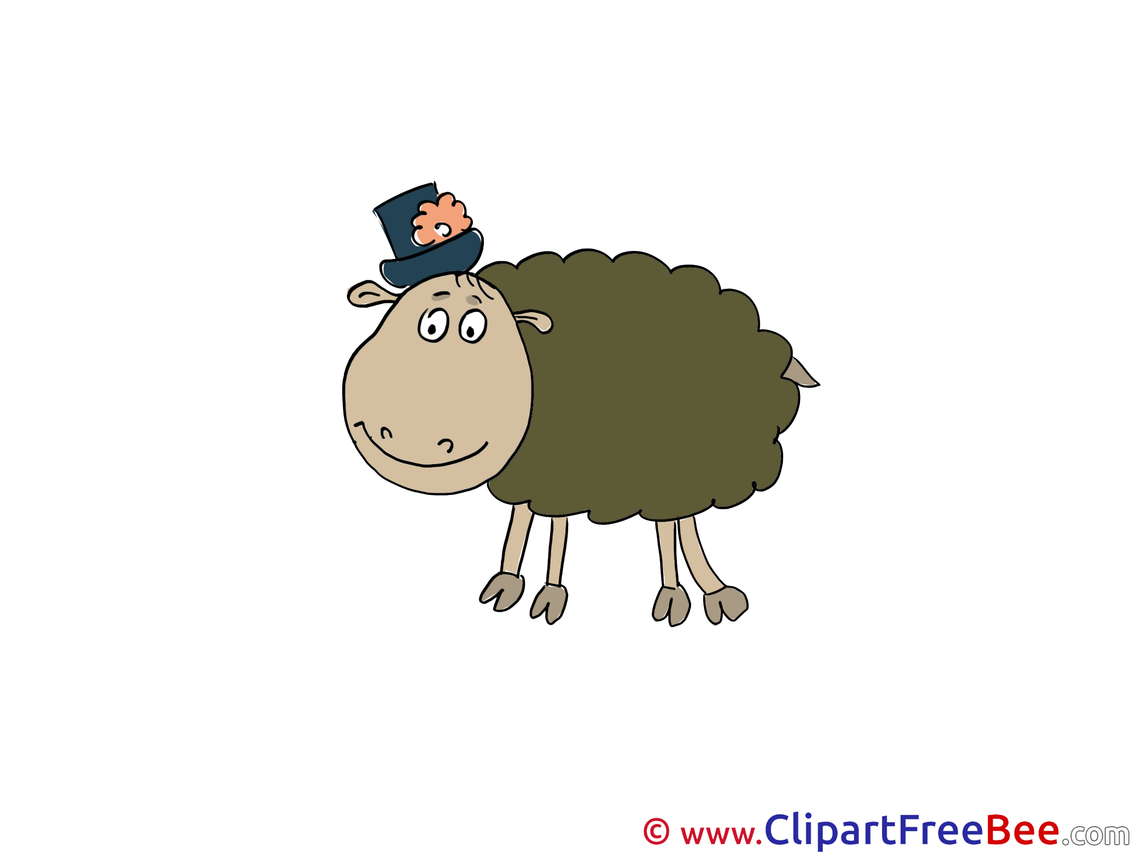 Hat Sheep Pics free download Image