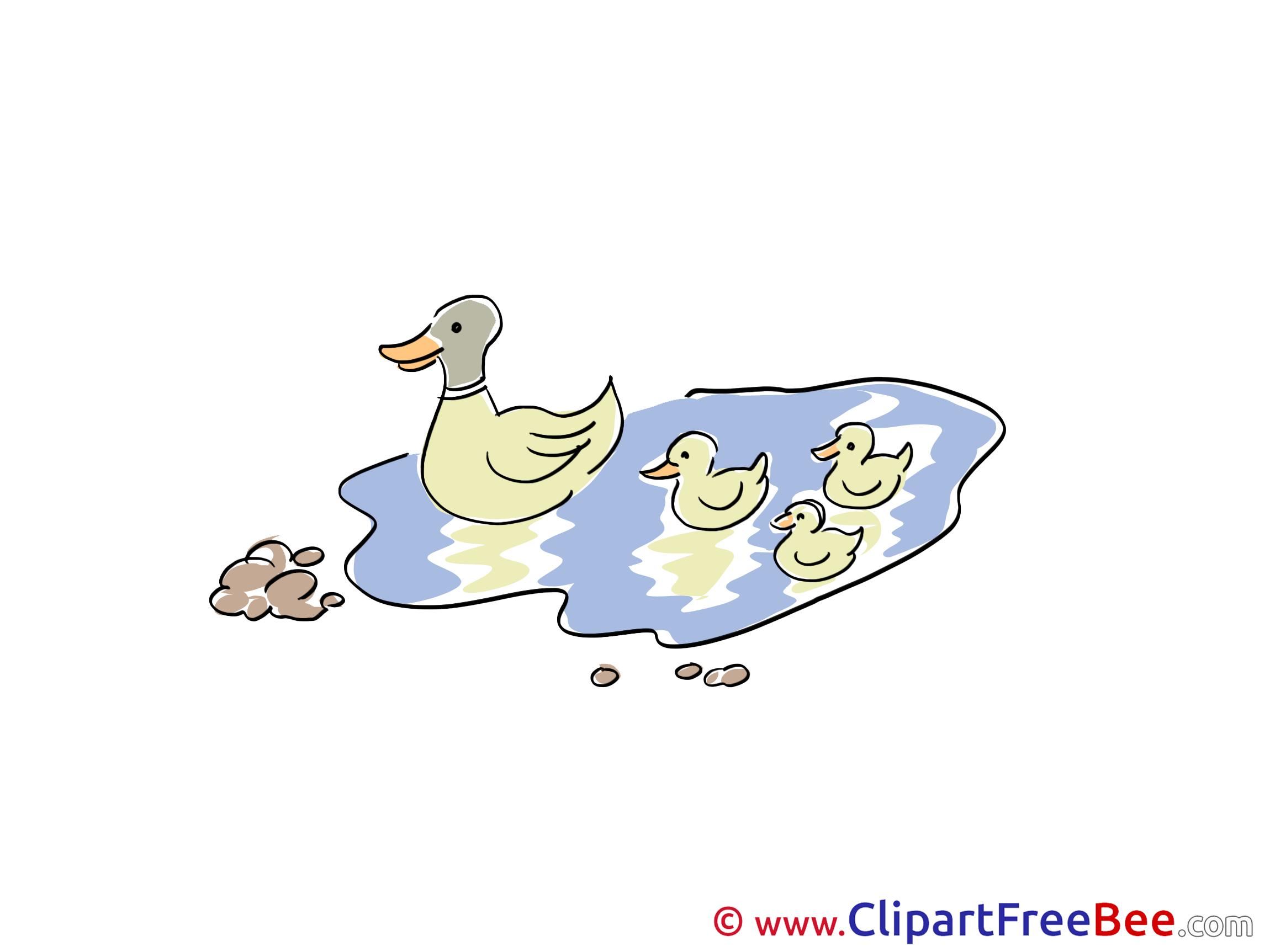 Lake Ducks printable Illustrations for free