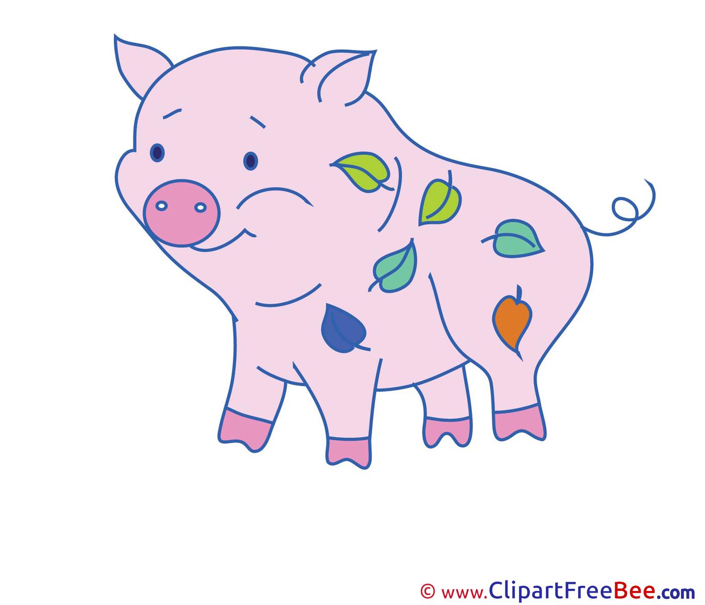 Leaves Pig Pics free download Image