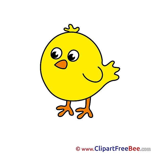 Little Chick free Cliparts for download