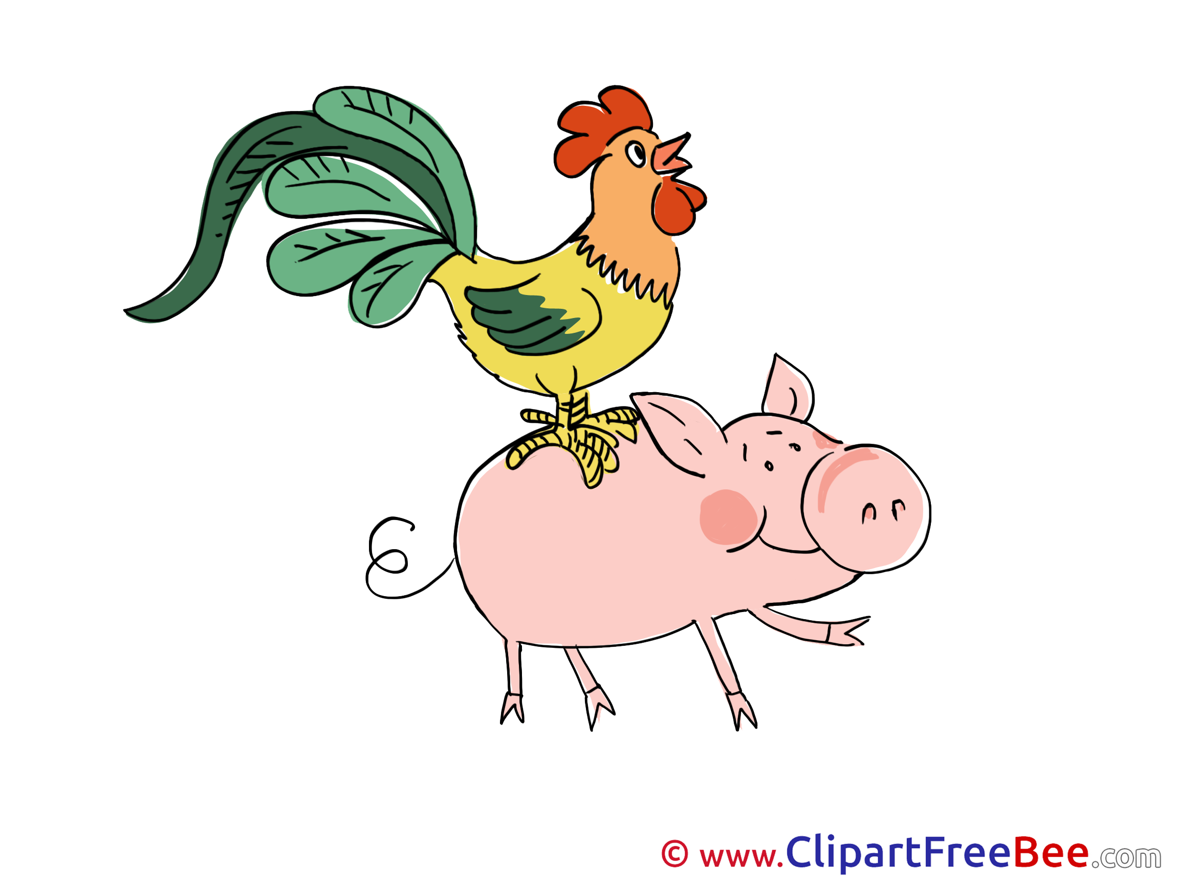 Piggy Chicken Clipart free Illustrations