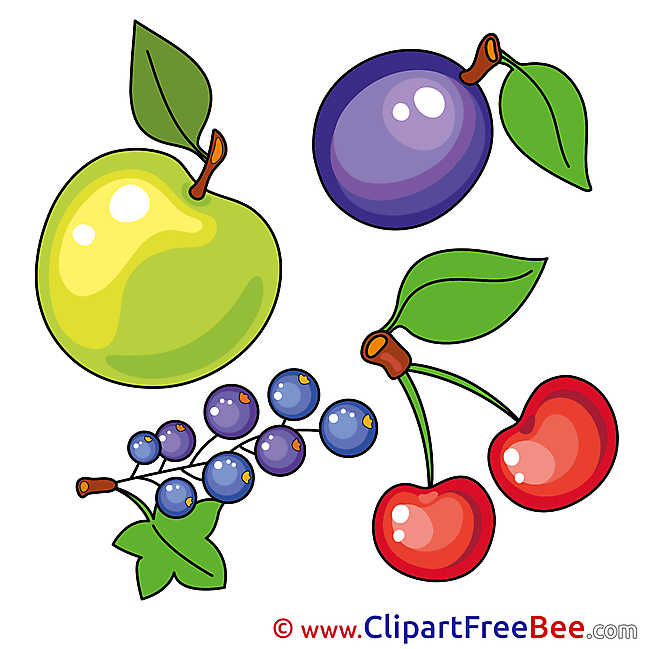 Illustration Fruits Apple Cherry Plum Clipart free Image download