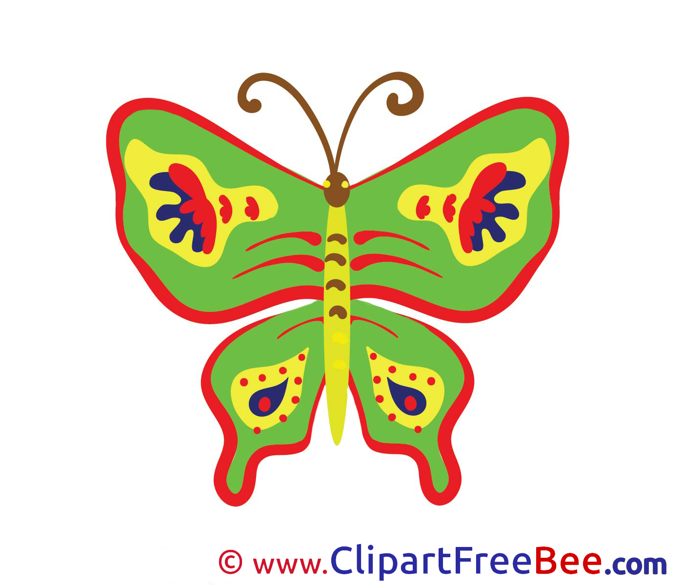 Butterfly Images download free Cliparts