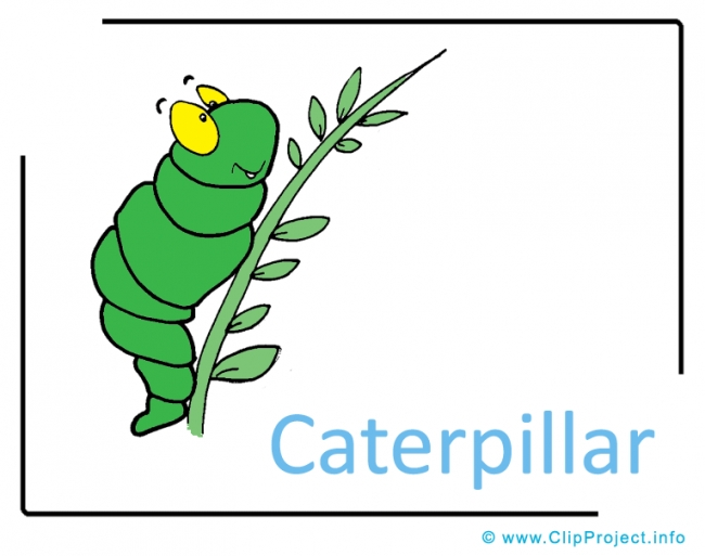 Caterpillar Clipart Image free - Insects Clipart Images free
