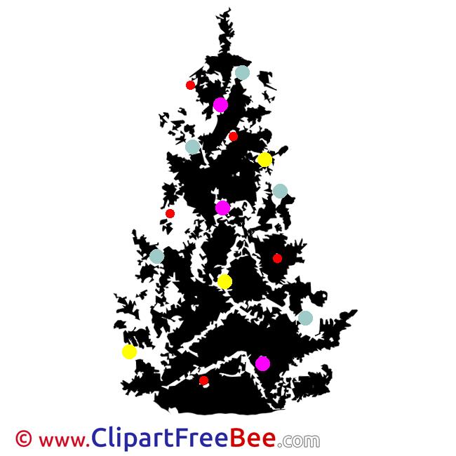 Black Christmas Tree Pics Winter free Image