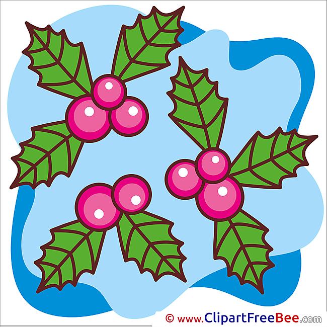 Plant Pics Winter free Cliparts