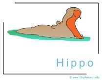 Hippo Clip Art Image free