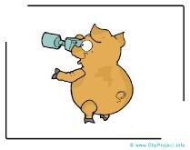 Pig Clip Art Image free