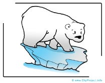 Polar Bear Clip Art Image free - Animals Clip Art free