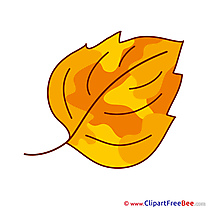 Autumn Leaf Clip Art for free