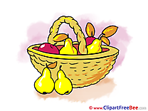 Basket Fruits download Autumn Illustrations