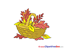 Basket Leaves Pics Autumn Illustration