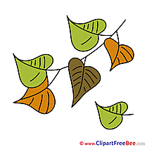 Clip Art Leaves download Autumn