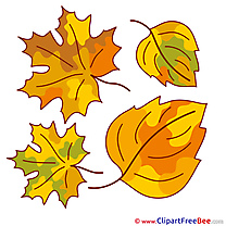 Clipart Leaves Autumn free Images