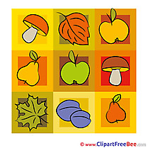 Decoration Fruits Clipart Autumn Illustrations
