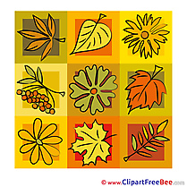 Download Leaves Autumn Illustrations