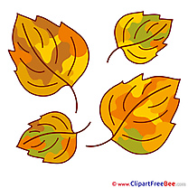 Download Leaves Clipart Autumn Cliparts