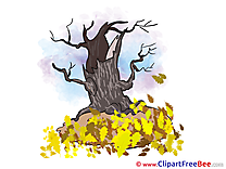 Dry Tree free Illustration Autumn