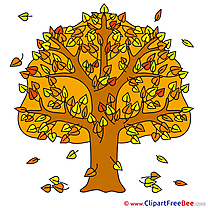 Falling Leaves Autumn Illustrations for free
