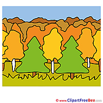 Forest Pics Autumn free Image