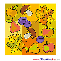 Plums Mushroom Clipart Autumn Illustrations