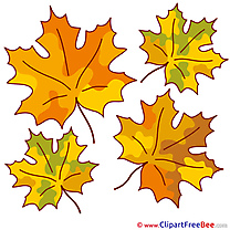 Printable Leaves Illustrations Autumn
