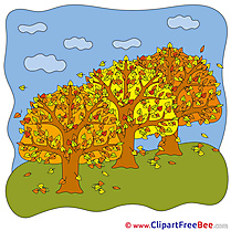 Trees Autumn free Images download