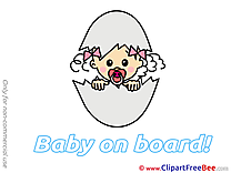 Egg Baby on board Illustrations for free