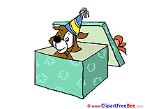 Box Surprise free Illustration Birthday