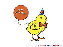 Chicken Balloon Pics Birthday free Image