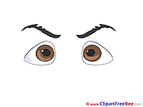 Brown Eyes Clip Art download for free