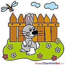 Fence Hare free Illustration download