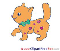 Hearts Cat Pics free download Image