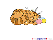 Sleeping Cat printable Images for download
