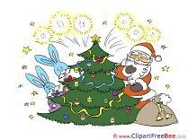 Hares Fireworks Christmas free Images download