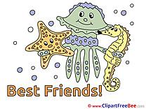 Medusa Starfish Sea Horse free Illustration Best Friends