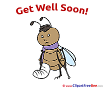 Bug Crutches Gypsum Get Well Soon Clip Art for free