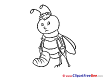 Bug Crutches Gypsum Get Well Soon Illustrations for free