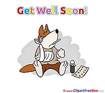 Dog Medicine Pills free Illustration Get Well Soon