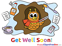 Drawing Owl Clip Art download Get Well Soon