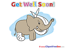 Elephant Gypsum printable Get Well Soon Images