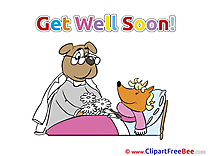 Fox Flowers Dog Clipart Get Well Soon Illustrations
