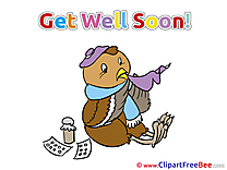 Owl Bird Get Well Soon Illustrations for free