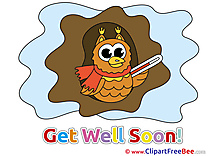 Owl Pics Get Well Soon Illustration