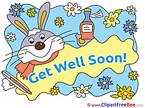 Rabbit Pills Medicine Get Well Soon free Images download