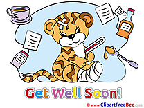 Tiger Gypsum free Cliparts Get Well Soon
