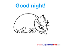 Cat free Cliparts Good Night