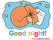 Cat Pillow Stars Clipart Good Night free Images